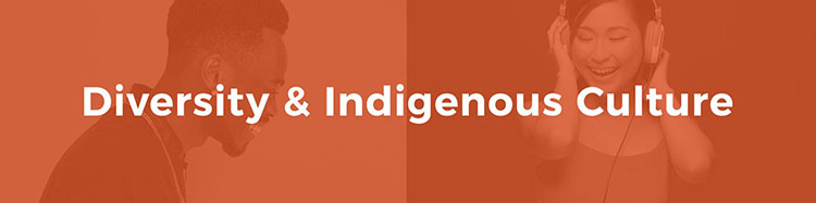 Our Values illuminance solutions Diversity and Indigenous Culture banner